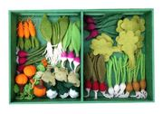 Grow a Garden Wool Felt Veggie Kit