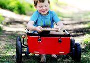 Wishbone Kids Wagon